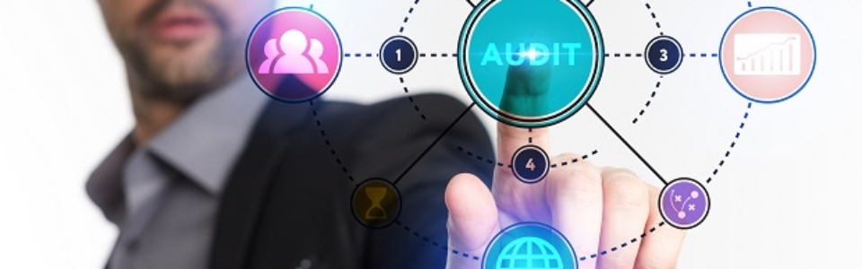Auditing for government agencies and nonprofit organizations in New Mexico